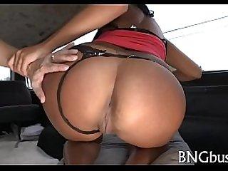 Bangbus porn